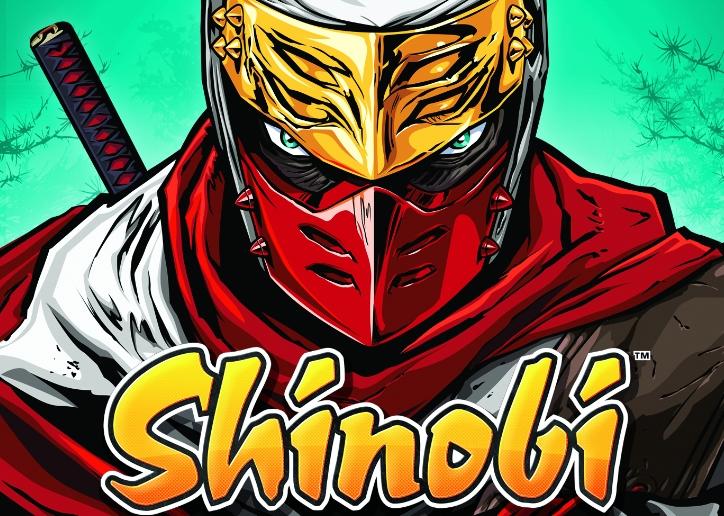 SHINOBI3DSR