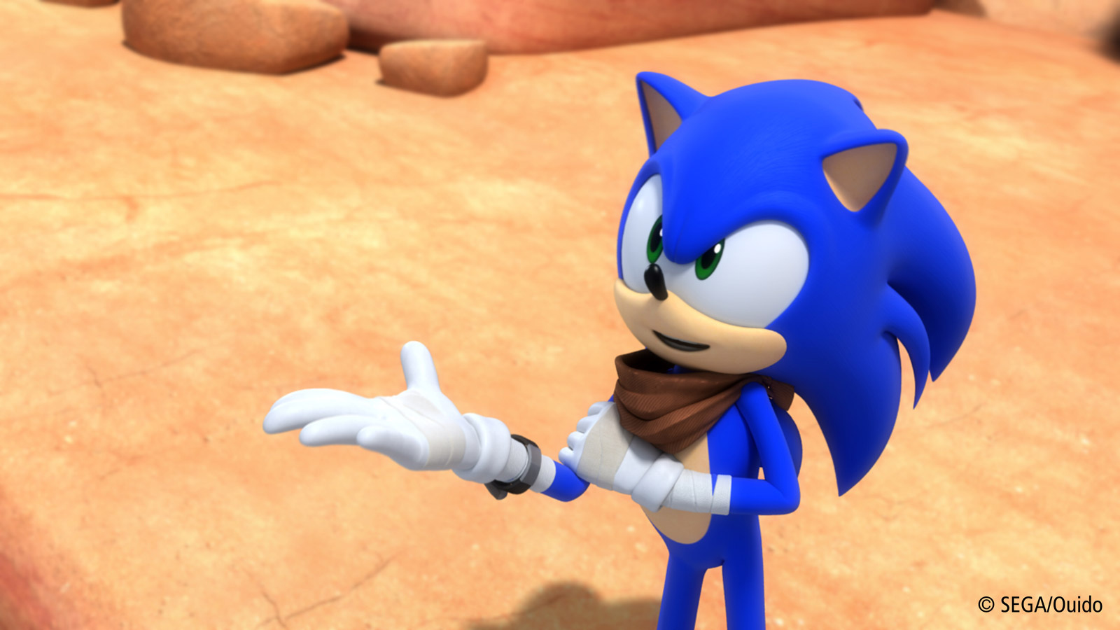 Sonic Boom tv Series Characters Overall Sonic Boom's tv