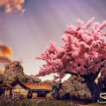 Shenmue 3 - 3